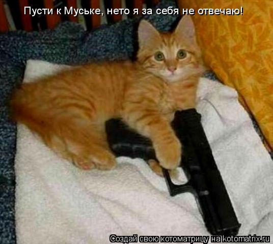 Котоматрица: Пусти к Муське, нето я за себя не отвечаю!