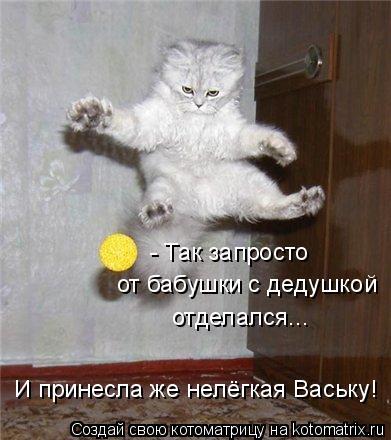 Котоматрица: - Так запросто  от бабушки с дедушкой отделался... И принесла же нелёгкая Ваську!