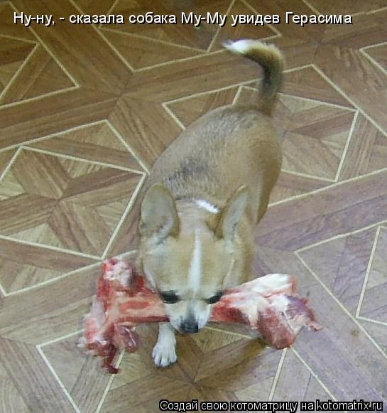 Котоматрица: Ну-ну, - сказала собака Му-Му увидев Герасима