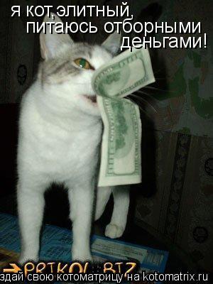 Котоматрица: я кот,элитный, питаюсь отборными деньгами!
