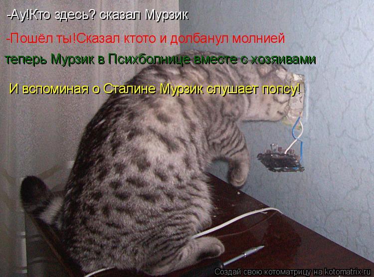 Котоматрица: -Ау!Кто здесь? сказал Мурзик -Пошёл ты!Сказал ктото и долбанул молнией  теперь Мурзик в Психболнице вместе с хозяивами  И вспоминая о Сталине