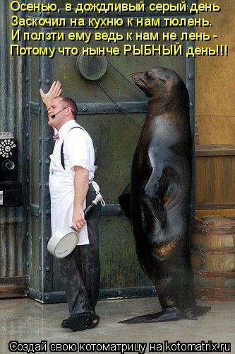 Котоматрица: Осенью, в дождливый серый день Заскочил на кухню к нам тюлень. И ползти ему ведь к нам не лень - Потому что нынче РЫБНЫЙ день!!!