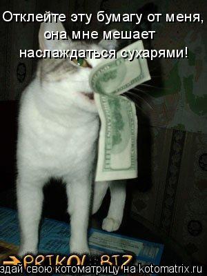 Котоматрица: Отклейте эту бумагу от меня,  она мне мешает  наслаждаться сухарями!