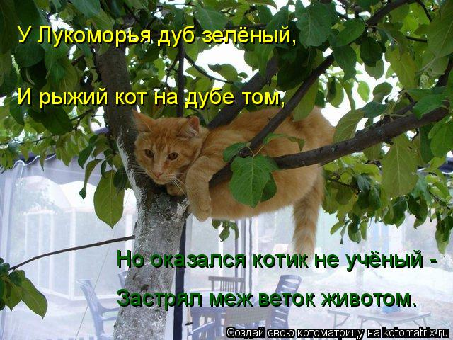 Анекдоты про у лукоморья дуб зелёный