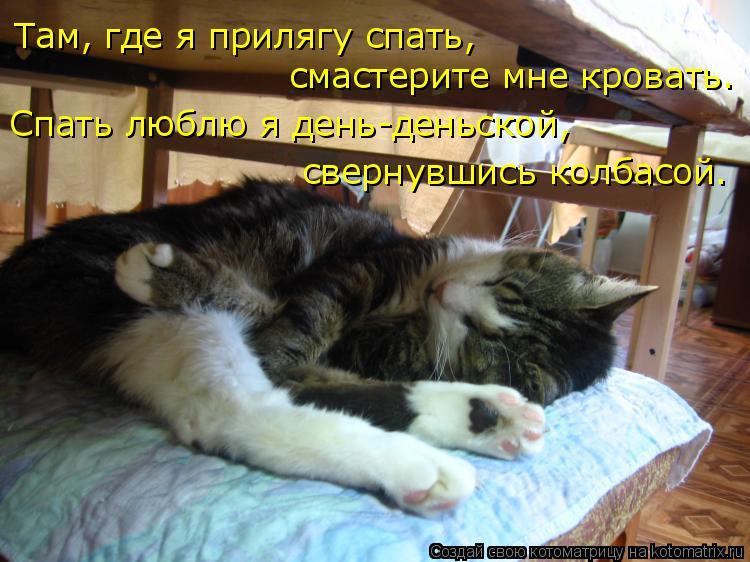 Котоматрица: Там, где я прилягу спать, смастерите мне кровать. Спать люблю я день-деньской, свернувшись колбасой.