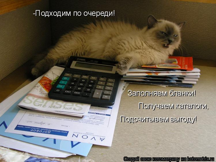 Котоматрица: -Подходим по очереди! Заполняем бланки! Получаем каталоги, Подсчитывем выгоду!