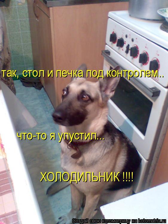 Котоматрица: так, стол и печка под контролем.. что-то я упустил... ХОЛОДИЛЬНИК !!!!