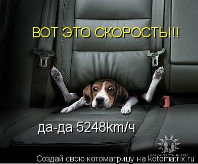 Котоматрица: ВОТ ЭТО СКОРОСТЬ!!! да-да 5248km/ч