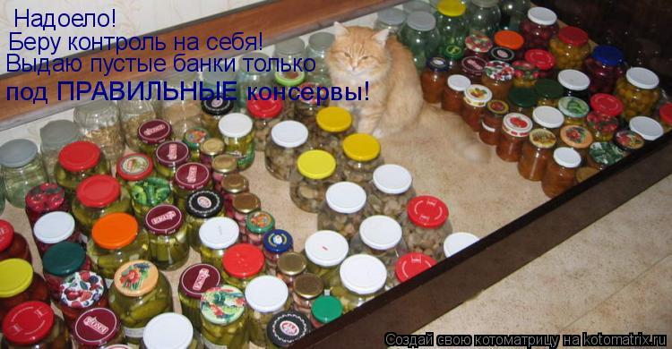 Котоматрица: Надоело! Беру контроль на себя! Выдаю пустые банки только под ПРАВИЛЬНЫЕ консервы! под ПРАВИЛЬНЫЕ консервы!