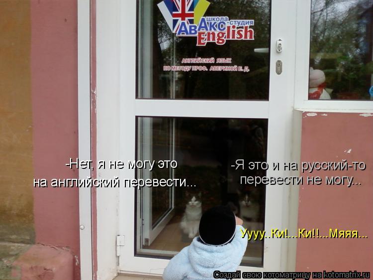 Котоматрица: -Нет, я не могу это  на английский перевести... -Я это и на русский-то перевести не могу... Уууу..Ки!...Ки!!...Мяяя...