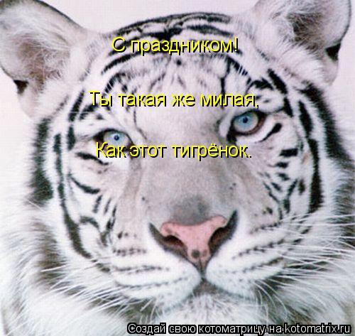 Котоматрица: С праздником! Ты такая же милая, Как этот тигрёнок.