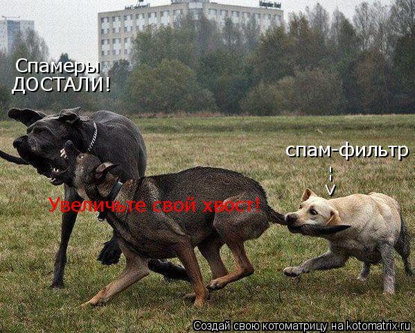 Котоматрица: Спамеры ДОСТАЛИ! Увеличьте свой хвост! спам-фильтр -->