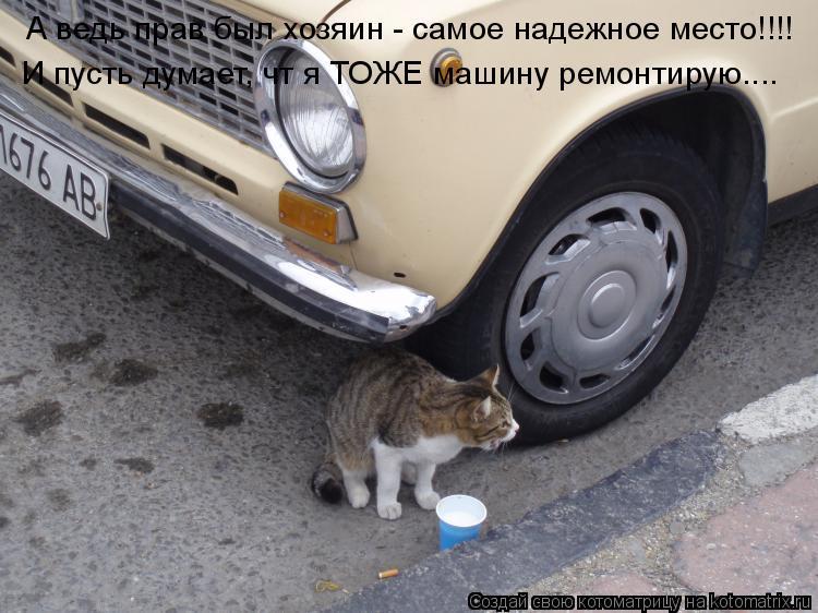 Котоматрица: А ведь прав был хозяин - самое надежное место!!!! И пусть думает, чт я ТОЖЕ машину ремонтирую....