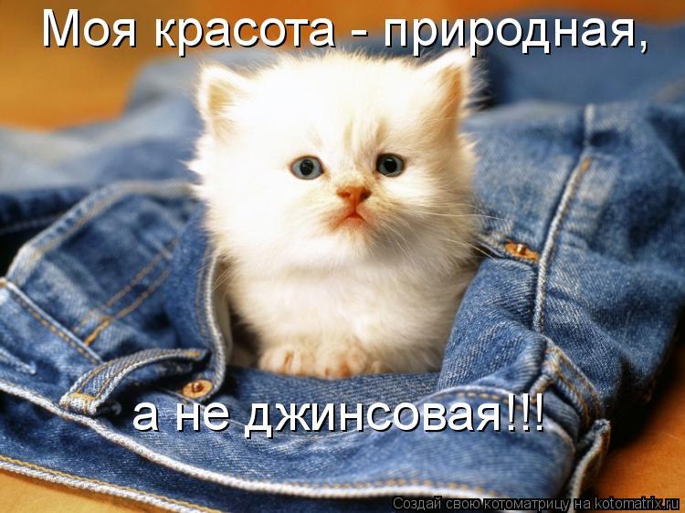 Котоматрица: Моя красота - природная, а не джинсовая!!!