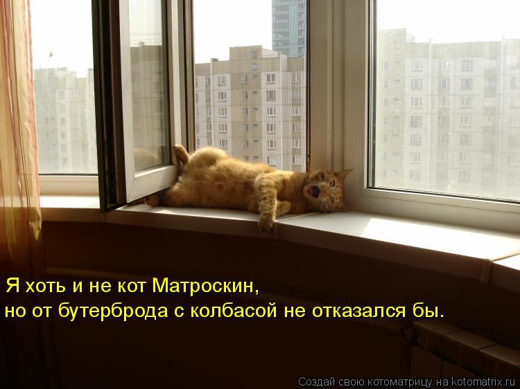 Котоматрица: Я хоть и не кот Матроскин, но от бутерброда с колбасой не отказался бы.