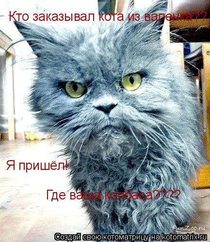 Котоматрица: Кто заказывал кота из валенка?? Я пришёл! Где ваша колбаса????