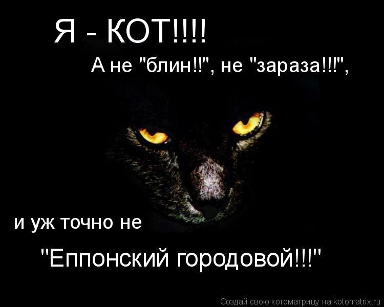 """Котоматрица: Я - КОТ!!!! А не """"блин!!"""", не """"зараза!!!"""", и уж точно не  """"Еппонский городовой!!!"""""""