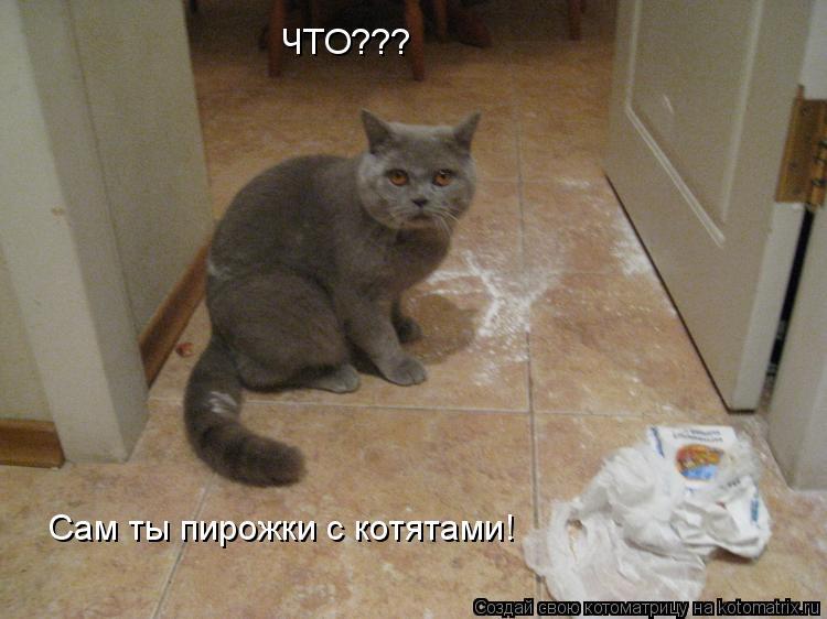 Котоматрица: ЧТО??? Сам ты пирожки с котятами!