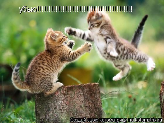 Котоматрица: убью!!!!!!!!!!!!!!!!!!!!!!!!!!!!!!!!!!!!!!!!!