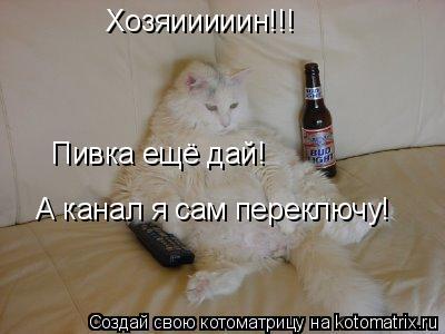 Котоматрица: Хозяииииин!!! Пивка ещё дай! А канал я сам переключу!