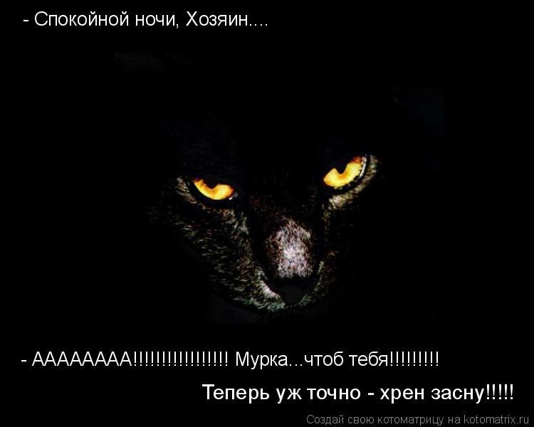 Котоматрица: - Спокойной ночи, Хозяин.... - АААААААА!!!!!!!!!!!!!!!!! Мурка...чтоб тебя!!!!!!!!! Теперь уж точно - хрен засну!!!!!