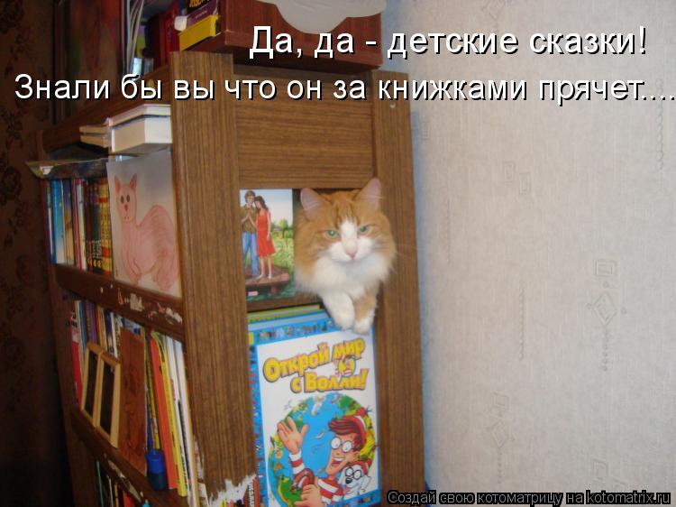 Котоматрица: Да, да - детские сказки! Знали бы вы что он за книжками прячет....