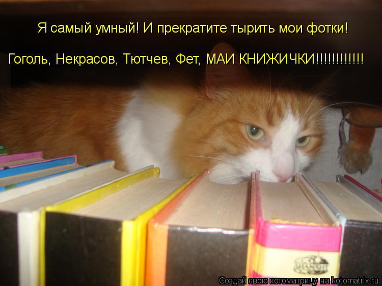 Котоматрица: Я самый умный! И прекратите тырить мои фотки! Гоголь, Некрасов, Тютчев, Фет, МАИ КНИЖИЧКИ!!!!!!!!!!!!
