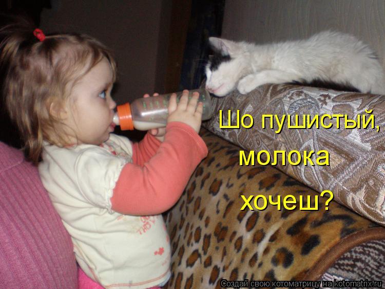 Котоматрица: молока хочеш? Шо пушистый,