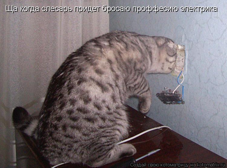 Котоматрица: Ща когда слесарь придет бросаю проффесию электрика