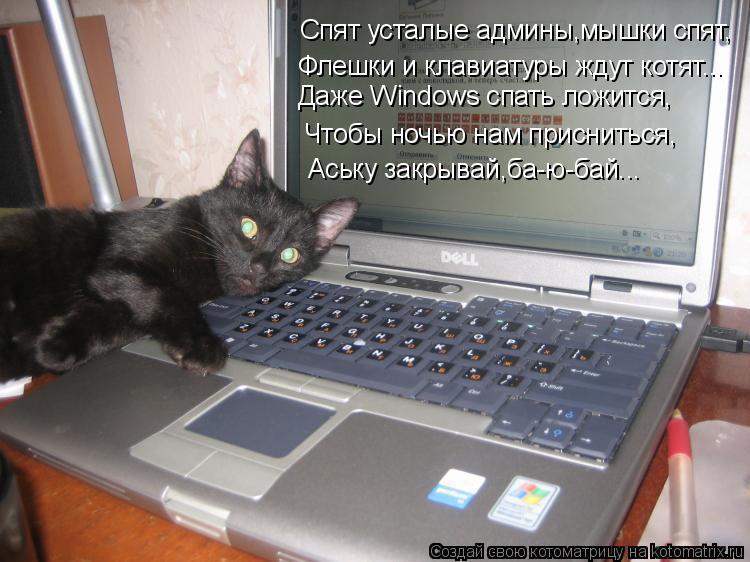Котоматрица: Спят усталые админы,мышки спят, Флешки и клавиатуры ждут котят... Даже Windows спать ложится, Чтобы ночью нам присниться, Аську закрывай,ба-ю-бай