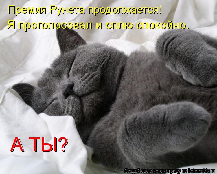 Котоматрица: Премия Рунета продолжается! Я проголосовал и сплю спокойно. А ТЫ? А ТЫ?