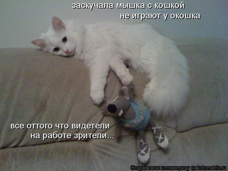 Котоматрица: заскучала мышка с кошкой не играют у окошка все оттого что видетели на работе зрители...