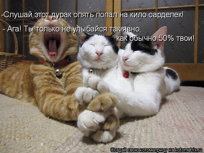 Котоматрица: -Слушай,этот дурак опять попал на кило сарделек! - Ага! Ты только не улыбайся так явно,  как обычно 50% твои!