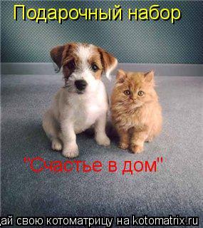 """Котоматрица: Подарочный набор """"Счастье в дом"""""""