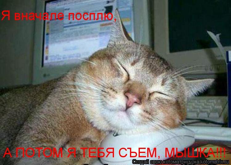 Котоматрица: Я вначале посплю, А ПОТОМ Я ТЕБЯ СЪЕМ, МЫШКА!!!