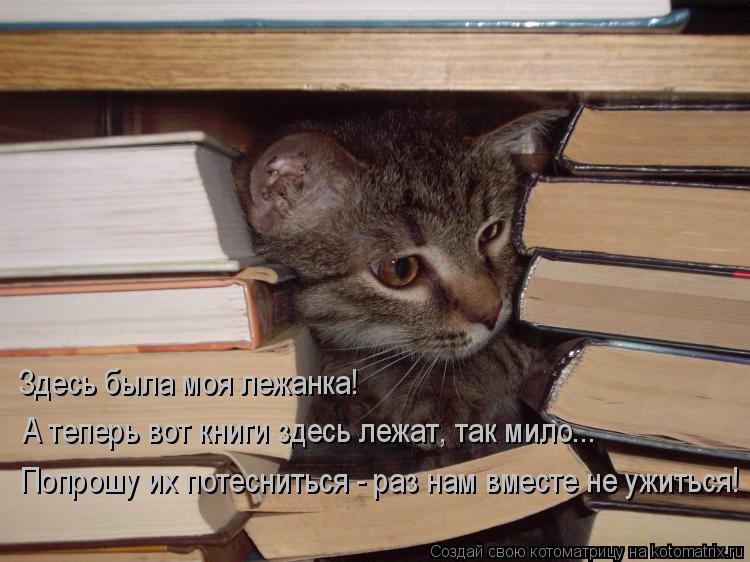 Котоматрица: Здесь была моя лежанка! А теперь вот книги здесь лежат, так мило...  Попрошу их потесниться - раз нам вместе не ужиться!