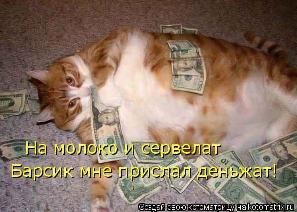 Котоматрица: На молоко и сервелат Барсик мне прислал деньжат!