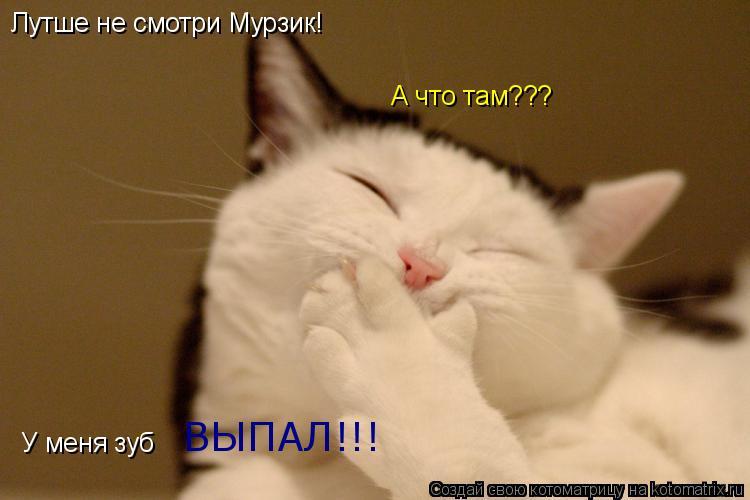 Котоматрица: Лутше не смотри Мурзик! А что там??? У меня зуб  ВЫПАЛ!!!