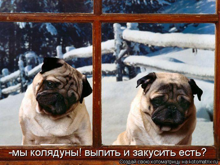http://kotomatrix.ru/images/lolz/2009/10/28/389279.jpg
