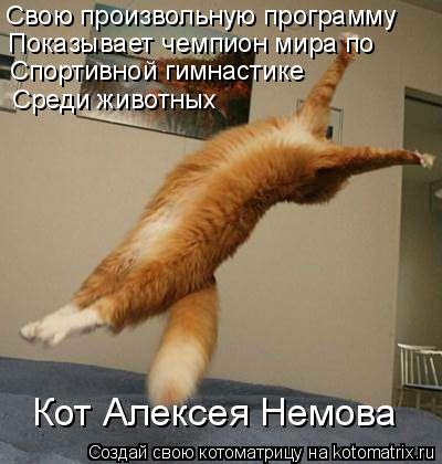 Котоматрица: Свою произвольную программу Показывает чемпион мира по Спортивной гимнастике Кот Алексея Немова Среди животных