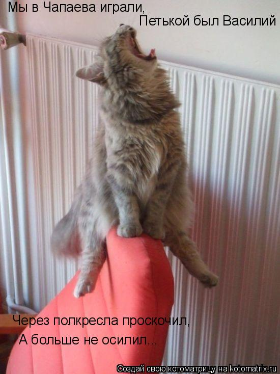 Котоматрица: Мы в Чапаева играли,  Петькой был Василий Через полкресла проскочил, А больше не осилил...