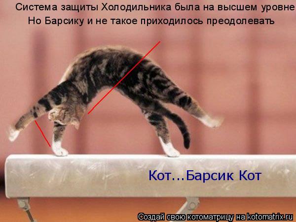 Котоматрица: ______________ ____ Система защиты Холодильника была на высшем уровне Но Барсику и не такое приходилось преодолевать Кот...Барсик Кот