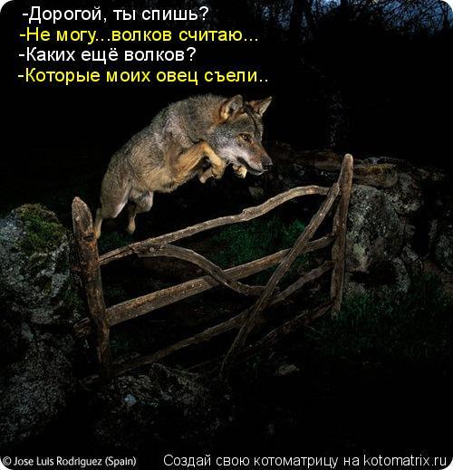 http://kotomatrix.ru/images/lolz/2009/10/28/389335.jpg