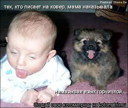 Котоматрица: тех, кто писает на ковер, мама наказывала  намазывая язык горчичкой...