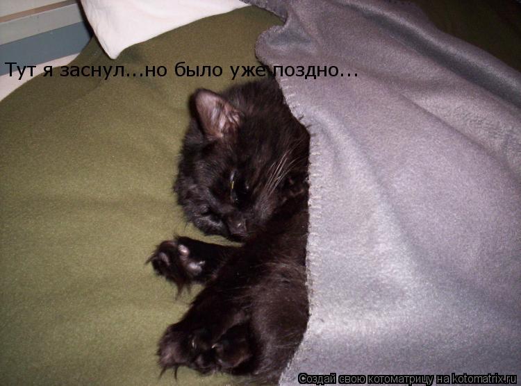 Котоматрица: Тут я заснул...но было уже поздно...