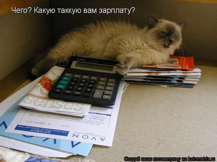 Котоматрица: Чего? Какую таккую вам зарплату?