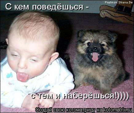 Котоматрица: С кем поведёшься -  с тем и наберёшься!))))