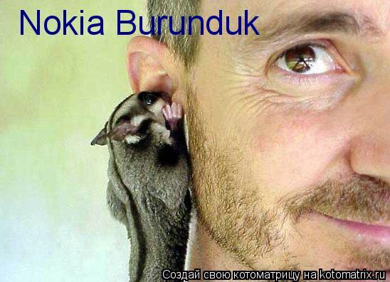 Котоматрица: Nokia Burunduk