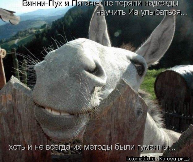 Котоматрица: научить Иа улыбаться... Винни-Пух и Пятачек не теряли надежды хоть и не всегда их методы были гуманны...