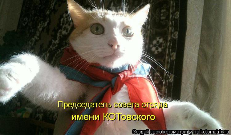 Котоматрица: Председатель совета отряда имени КОТовского